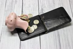 Den valt tillbringaren med pengar och en handväska royaltyfria foton