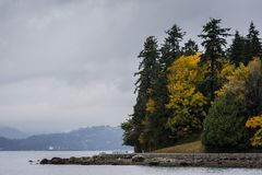 Den Vancouver skyddsmuren mot havet i Stanley parkerar Royaltyfri Fotografi
