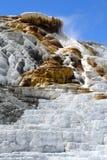 den varma kolossala nationalparken springs yellowstone arkivfoton