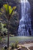 Den vertikala sikten av Karekare faller Nya Zeeland Royaltyfria Bilder