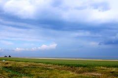 Den vidsträckta grässlätten under den blåa himlen Fotografering för Bildbyråer