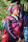 Den vietnamesiska etniska H'Mong kvinnan i traditionella dräkter med behandla som ett barn på henne tillbaka Arkivfoton
