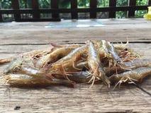 Den vietnamesiska greasybackräkan eller sandräka, Metapenaeus ensis Royaltyfri Foto