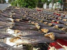 Den vietnamesiska kokkonsten: skaldjur - torkad fisk Arkivbilder