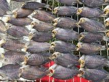 Den vietnamesiska kokkonsten: skaldjur - torkad fisk Arkivbild