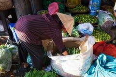 Den vietnamesiska kvinnan sorterar grönsaker på gatamarknaden, Nha Trang, Vietnam Royaltyfri Bild