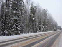 Den vintervägen och skogen Royaltyfri Fotografi