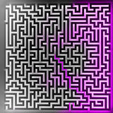 Den violetta spelarelösningen på bästa tredimensionell maze beskådar Royaltyfri Fotografi