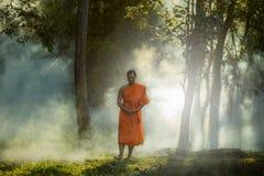 Den Vipassana meditationmunken går i en tyst skog royaltyfri foto