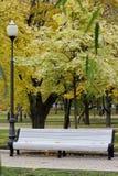 Den vita bänken parkerar in, streetlampen Arkivbild