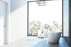 Den vita badruminre, badar Fotografering för Bildbyråer