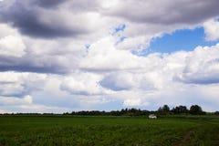 Den vita bilen på landsvägen mellan gräsplanfält med en molnhimmel på en bakgrund Royaltyfri Fotografi