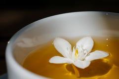 Den vita blomman svävar i en kopp te royaltyfri bild
