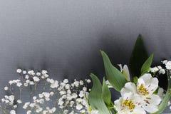 Den vita buketten blommar vårtemabakgrund fotografering för bildbyråer