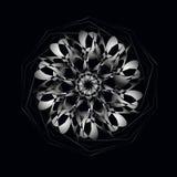 Den vita cirkeln snör åt prydnaden Vektorillustration, dekorativ bakgrund Royaltyfri Bild