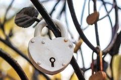 Den vita hänglåset i form av en hjärta hänger på en filial av en iro royaltyfri fotografi