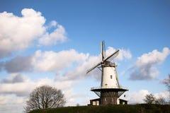 Den vita holländska väderkvarnen på en gräskulle med blå himmel och vit fördunklar Zeeland Nederländerna Arkivbilder