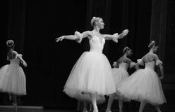 Den vita nötknäpparen för snöfe-balett Arkivfoton