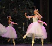 Den vita nötknäpparen för snöfe-balett Royaltyfri Bild