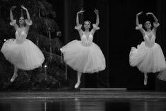 Den vita nötknäpparen för snöfe-balett Royaltyfria Foton