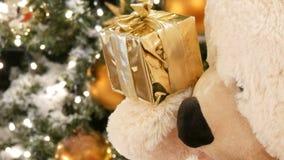 Den vita nallebjörnen, rymmer en ask med en gåva i hans tafsar och flyttar sig på bakgrunden av julgranslutet upp sikt arkivfilmer