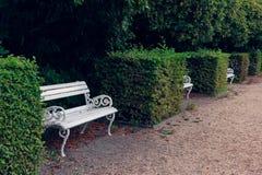Den vita openwork bänken i staden parkerar royaltyfri bild