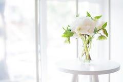 Den vita pionen blommar på kaffetabellen i inre för vitt rum, fängelse royaltyfria foton