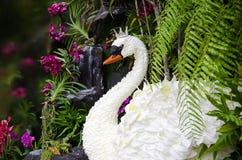 Den vita svanQueens uppfanns av blommor. Royaltyfri Fotografi