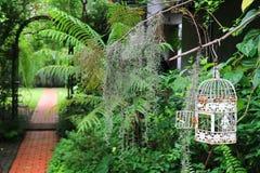 Den vita tomma fågelburen i en tropisk trädgård med tegelstenar stenlade gångbanan Arkivbilder
