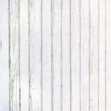 Den vita wood texturen med naturlig modellbakgrund Royaltyfri Bild