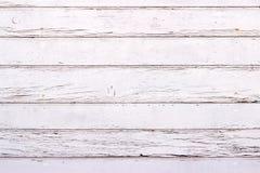 Den vita wood texturen med naturlig modellbakgrund Arkivbilder