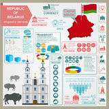 Den Vitryssland infographicsen, statistiska data, siktar Royaltyfria Bilder