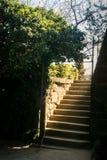 Den Vorontsov slotten parkerar trappa upp under den Krim solen Royaltyfri Fotografi