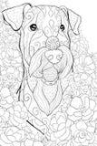 Den vuxna färgläggningboken, söker en gullig head dogon den blom- bakgrunden för att koppla av Illustration för Zenkonststil Royaltyfri Fotografi