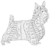 Den vuxna färgläggningboken, söker en gullig isolerad hund för att koppla av Illustration för Zenkonststil Royaltyfri Bild