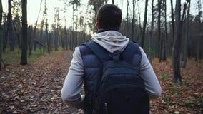 Den vuxna mannen promenerar den höstliga skogen för att få nya intryck av naturen