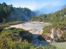 Den Wai-O-Tapu thermalen parkerar, Nya Zeeland royaltyfri fotografi