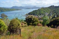 Den Waikawa fjärden, Marlborough låter bergstoppsikt royaltyfri bild