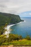 Den Waipio dalen förbiser på den stora ön av Hawaii Royaltyfri Fotografi