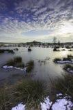 """Den Winterlandschap Fochteloà """"rveen, övervintra landskapFochteloà """"rveen royaltyfria foton"""
