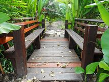 Den wood bron Arkivfoton