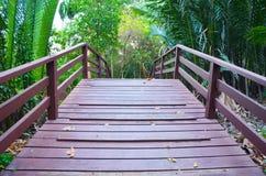 Den Wood bron och nypaen gömma i handflatan i trädgård Royaltyfri Foto