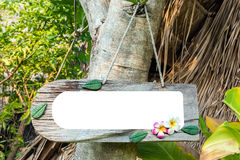 den wood etiketten på träd parkerar in mellanrum på den wood etiketten för meddelande av conc fotografering för bildbyråer
