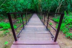 Den Wood gångbanan på ett löst parkerar till vattenfallet Huay Mae Kamin, Royaltyfria Bilder