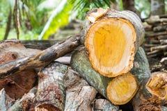 Den Wood högen klippte och ordnar till för att delas för vedträ Fotografering för Bildbyråer