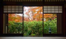 Den Wood ramdörröppningen och tatamimats i traditionellt japanskt te hyr rum i höst royaltyfri foto