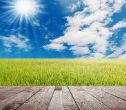 Den Wood tabellöverkanten på gröna gass med blå himmel och vit fördunklar fotografering för bildbyråer