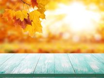 Den Wood tabellöverkanten på guld- bakgrund för skinande bokeh - kan användas för skärm eller montage dina produkter royaltyfri bild