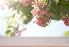 Den Wood tabellöverkanten på rosa färger blommar bokehbakgrund för produkt royaltyfri fotografi