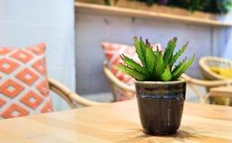Den Wood tabellen i kafé shoppar med ingen kund arkivfoton